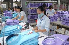 Challenges in implementing Vietnam-EU FTA put on table