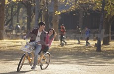 Vietnam, RoK soap to hit small screens in mid-December