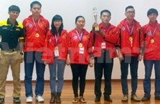 Vietnam leads at 2nd Southeast Asian Go Championship