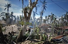 ASEAN offers assistance to Hagupit-hit Philippines
