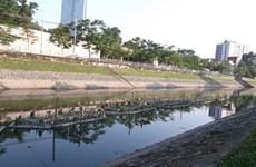 Aquatic rafts aim to clean To Lich river