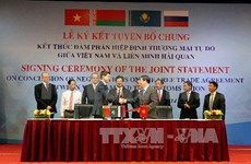 Negotiation concludes on Vietnam-Customs Union FTA