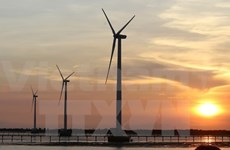 Mekong Delta to see wind power plants