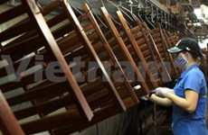 Wood product exports expect to grow next year