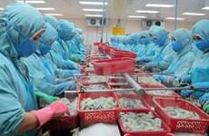 Beijing workshop analyses Vietnam-China economic ties