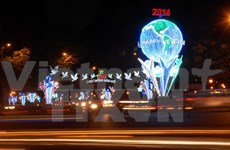 HCM City welcomes New Year with numerous festival activities