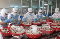 Tien Giang targets 1.6 billion USD in export turnover