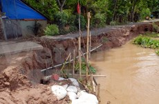 Can Tho to move thousands of households from erosion-prone areas