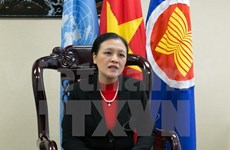 Vietnam aims for deeper involvement in 2015 UN agenda