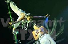 Vietnam wins awards at international circus festival