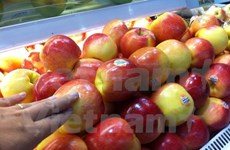 Vietnam issues warning on US-imported apples