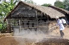 Health sector warns of H7N9 outbreak in Vietnam