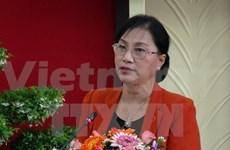 Vice NA Chairman, foreign investors talk SEZ development
