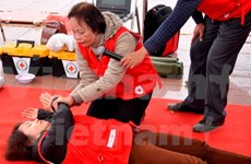 Road safety committee holds first-aid course in Hanoi
