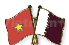 Vietnam, Qatar foreign ministries convene first political consultation