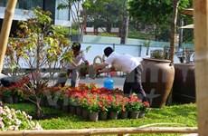 HCM City preparing for elated Tet