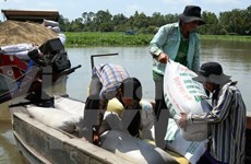 One million tonnes of rice to be purchased for stockpile