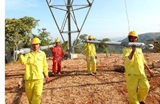 EVN expedites key power projects