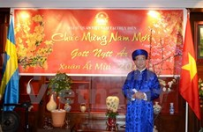 Vietnamese community in Sweden greets New Year