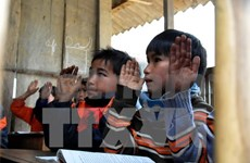 UN highlights significance of native language education