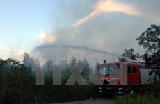 Dak Lak takes measures to prevent forest fires in 2015