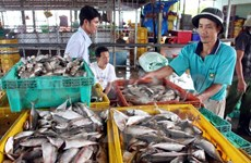Kien Giang's two-month export surges 24 percent