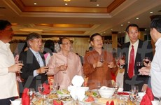 Vietnamese in Cyprus, Laos celebrate traditional New Year