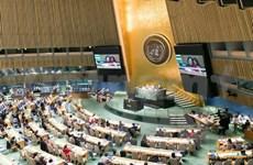Vietnam reiterates commitment to empowering women