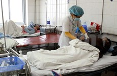 USAID helps Vietnam prevent emerging contagious diseases