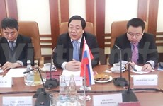 Diplomat confirms Vietnam's policy to enhance ties with Russia