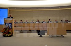 Vietnam calls for dialogue, cooperation to address human rights