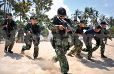 Indonesia to reinforce army in next five years