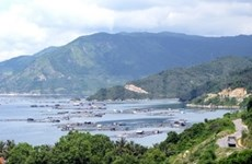 Phu Yen: vibrant life in Vung Ro historical site
