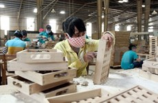 Vietnamese firms work hard to expand in Russia