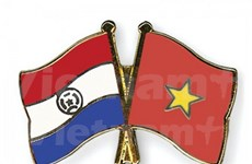 Vietnam, Paraguay holds first political consultations