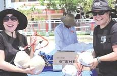 Da Nang set for world fireworks champs