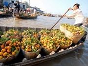 Mekong Delta needs huge investment to restore floating markets