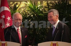 Singapore, Malaysia pleased with significant cooperation progress