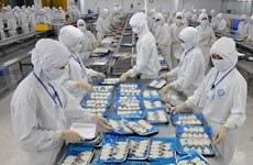 Vietnam issues first electronic certificate to EU-bound seafood exports