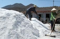 Salt industry needs new development strategies
