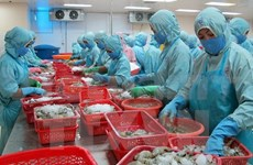 Vietnam strives to implement WTO's commitments
