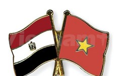Vietnam, Egypt hold eighth political consultation
