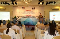 Vietnam-EU trade pact under scrutiny