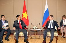 PM Dung holds meeting with Russian counterpart