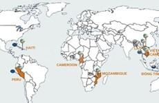 Viettel to earn 80 percent return on overseas operations