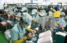 Hai Phong: New 100 mln USD plant to make electronic spare parts