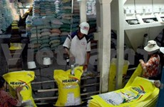 Maize imports rise as rice exports fall
