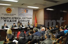 Vietnam, South Africa hold partnership forum
