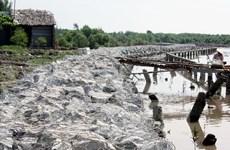 Vietnam prioritises measures against land erosion