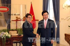 Vietnam-Indonesia relations developing soundly: officials